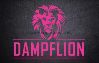 Dampflion-Pink Lion 20ml